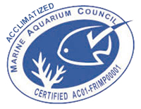 Acclimatized certification - Marine Aquarium Council